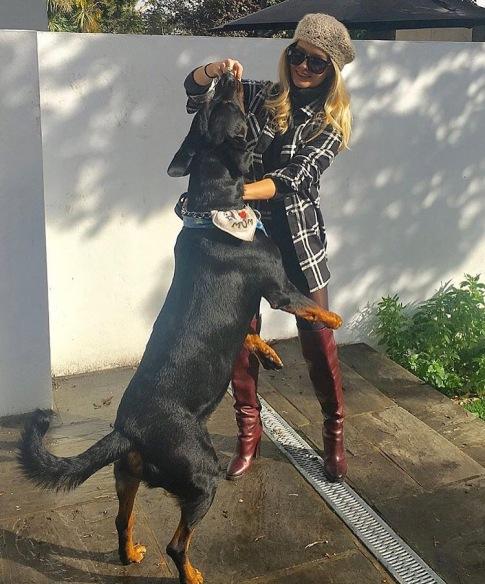 Big Dogs Zeus Anna